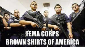fema corp brown shirts america